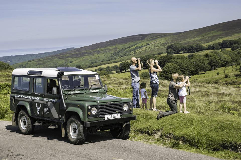 Family on Exmoor safari - Exmoor Wildlife Safaris